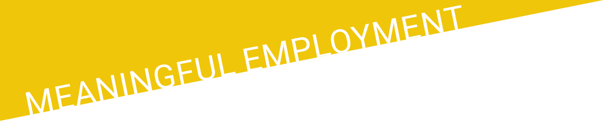 "Yellow ""Meaningful Employment"" banner"